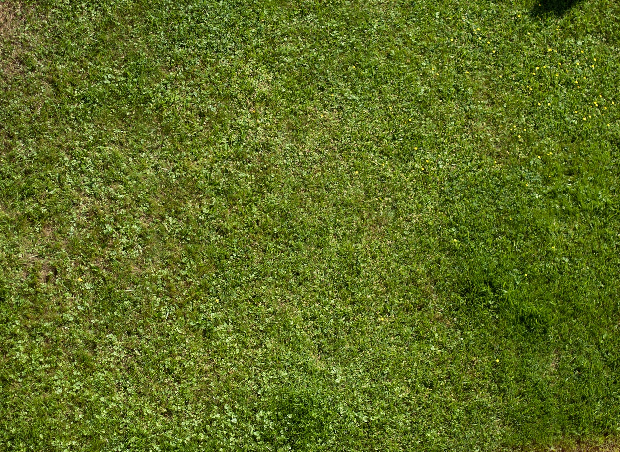 grass texture game. Exellent Game Download  For Grass Texture Game